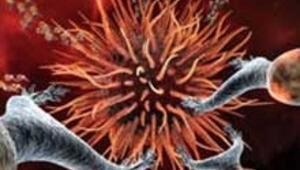 Kök hücre umut vaat ediyor