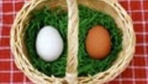 Hile yapılamayan tek gıda; Yumurta