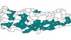 Domuz gribinden ölenlerin sayısı 113 oldu