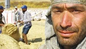 İşkur mevsimlik işçilere tarım aracı kartı verecek