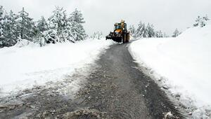 Lapa lapa kar yağdı