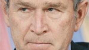 Bush dibe vurdu