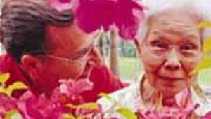 Okinawa sırları