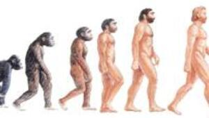 Evrimin halkaları birbirine ekleniyor