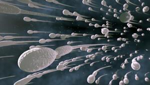 Erken menopoza karşı yumurtalarınızı dondurun