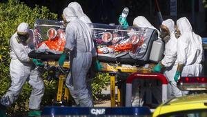 Prof. Dr. Faruk Aydın: Ebola salgını Türkiyeyi etkilemez