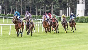 At koşar kim kazanır