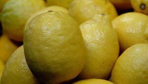 Yatak limon kazandırdı