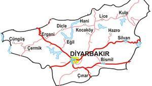 2015 Seçim sonuçları - Diyarbakır sonuçları  - oy oranları