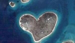 Dünyanın kalpleri