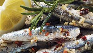 Muhteşem Süleyman'ın balığı: Hamsi