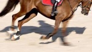Yarış atlarına prenses gibi bakılıyor