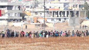 Suriyelilerin yüzde 54.97sinin kaydı tamam