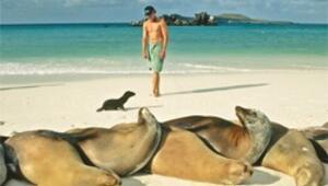 Galapagos'un hayvanları korku bilmiyor, poz vermeyi çok seviyor
