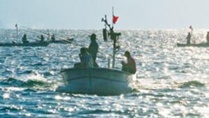 Sonarla balık avı neden serbest