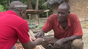 İlk kez çikolata yiyen  kakao işçileri