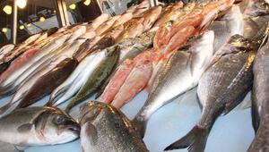 Balık fiyatları altını solladı
