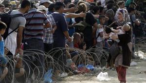 Avusturya, Suriyeli mülteciyi karnında ölü bebeğiyle Almanyaya gönderdi