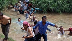 Jandarma Silopide sınırı yüzerek geçen şoförlere ateş açtı: 4 yaralı