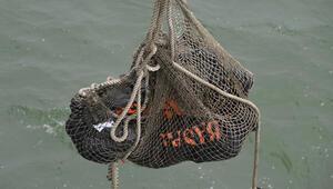 AirAsia uçak kazasında cesetleri böyle topladılar