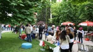 Ankara Üniversitesi sandığa gidiyor