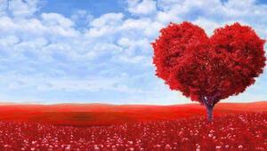 En güzel Sevgililer Günü mesajları (Sevgililer Günü doodle oldu)
