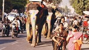 Jaipur'da bir hafta geçirdim en çok tarihi bölgesini sevdim