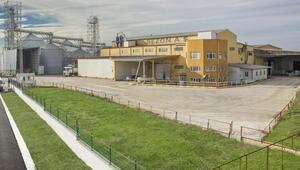 Türkiye bakliyat sektörünün köklü firmalarından Sezon Pirinç iflas erteleme istedi