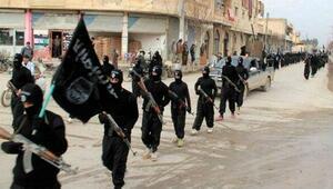 IŞİD, 2015te elindeki toprakların yüzde 14ünü kaybetti
