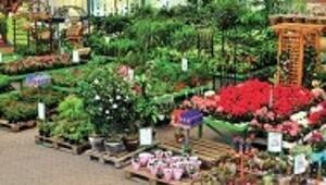 Bahçe alışverişi için en iyi 10 adres