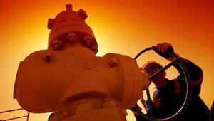Düşen petrol fiyatları hangi ülkeyi nasıl etkiliyor