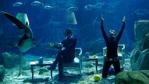 Rekortmen dalgıç Birgül Erkenden su altı gösterisi