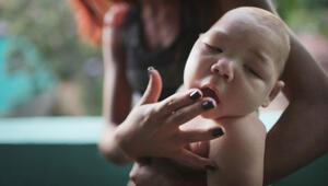 Amerika kıtasını Zika virüsü paniği sardı