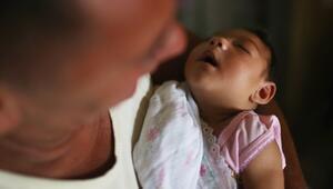 5 soruda Zika virüsü