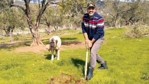 Kumpasla değişen hayatlar... Ömer Faruk Erdoğan artık bir çiftçi