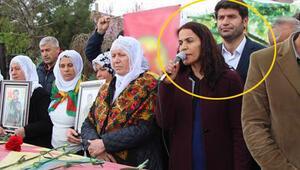 PKK'lı cenazesine katılan HDP'li milletvekillerine soruşturma
