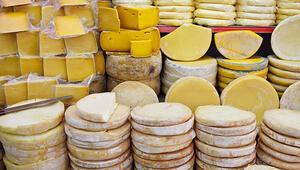 Türkiyenin en iyi 10 peyniri