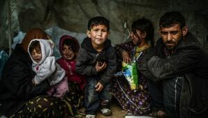 Zengin ülkeler Suriyeli mültecilerin sadece yüzde 1,4ünü kabul etti
