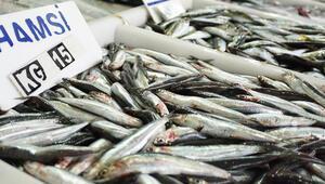 Karadenizde yaklaşık 400 bin ton hamsi avlandı