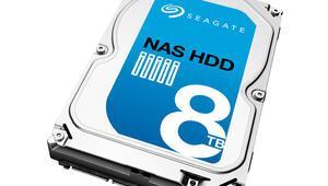 Seagateten 8 TBlık NAS disk