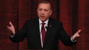 Cumhurbaşkanı Erdoğandan hakaret davaları için kritik açıklama