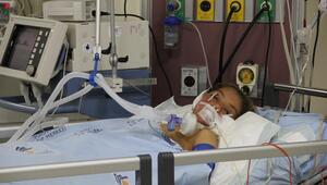 6 kardeşi mantar zehirlenmesinden ölen Suriyeli çocuk yaşam savaşı veriyor