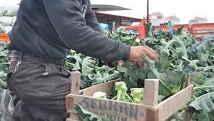 Bafra Sebze ve Meyve Halinde fiyatlar arttı