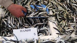 Soğuk hava balık tezgahlarını da etkiledi