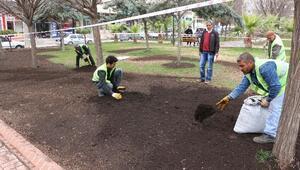 Haliliye'deki Parklar Yemyeşil Olacak