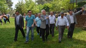 Yağlı Güreşlere CHP Bodrum Damgasını Vurdu