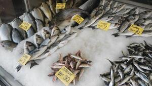 Balık Fiyatları Geriledi