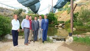 Kuş Cenneti Ve Mini Hayvanat Bahçesi Açıldı