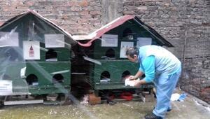 Beyoğlu Belediyesi Sokak Hayvanları İçin Seferber