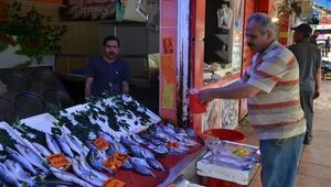 Eskişehirli Ramazan Ayında Ucuz Balık Tüketti